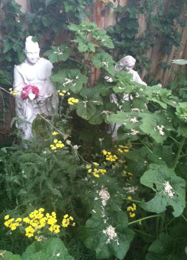 buddhaofinfintespacewflowersCROP