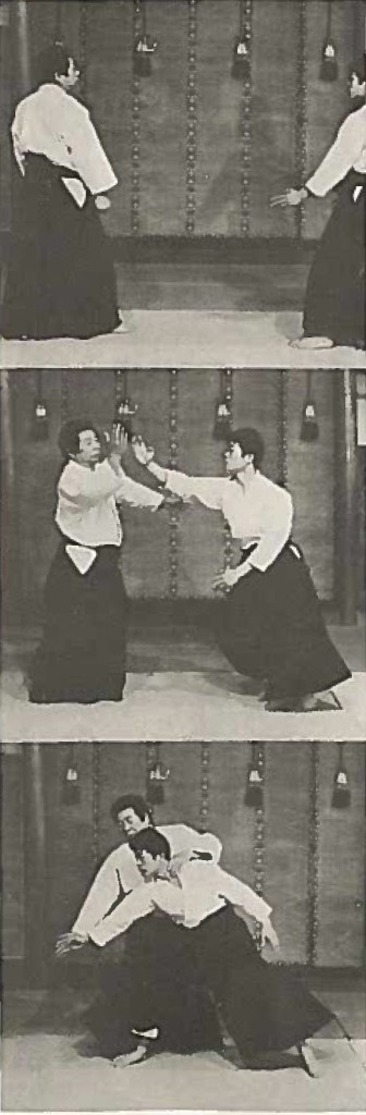 SaitoKiNoNagare2-page-001CROP1