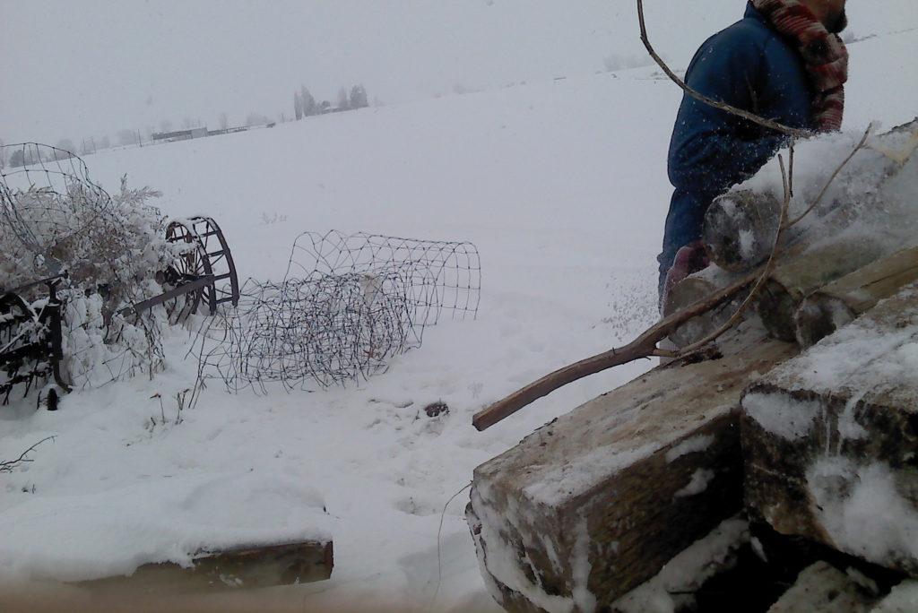 snowfield-1